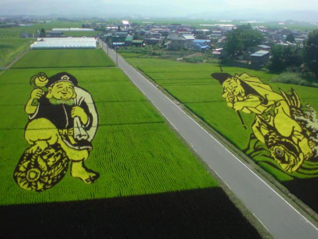 田舎舘のたんぼアート